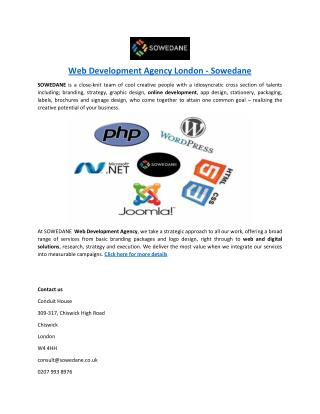 Web Development Agency London - Sowedane