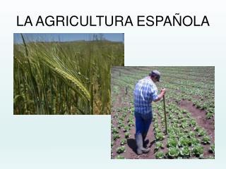 la agricultura en espana