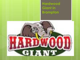 Hardwood Giant in Brampton