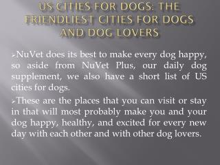US Cities for Dogs: The Friendliest Cities for Dogs and Dog Lovers