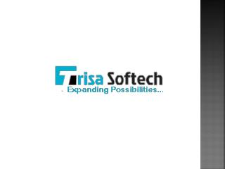 Get Search Engine Marketing by Trisa Softech