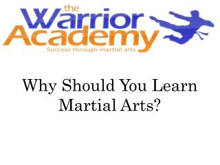 Why Should You Learn Martial Arts?