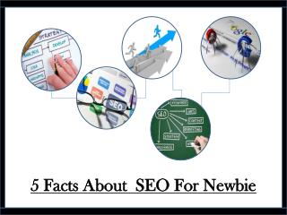 5 Facts About SEO For Newbie