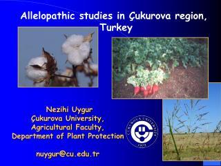Allelopathic studies in  ukurova region,  Turkey