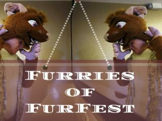 Furries of FurFest