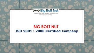 SS Fastener Manufacturers: Big Bolt Nut India