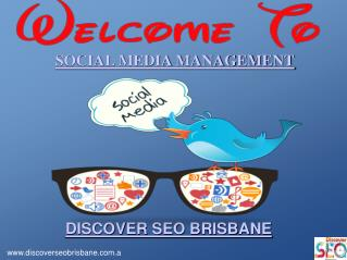 Best Social Media Management By Discover SEO Brisbane