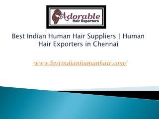 Best indian human hair exporters | Human hair suppliers in chennai