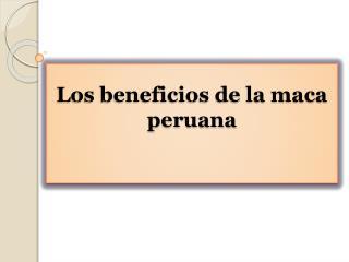 Los beneficios de la maca peruana