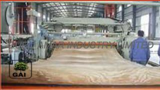 Plywood Machine in yamuana nagar