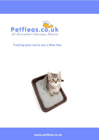Training your cat to use a litter tray