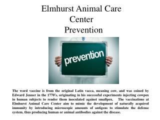 Elmhurst Animal Care Center prevention