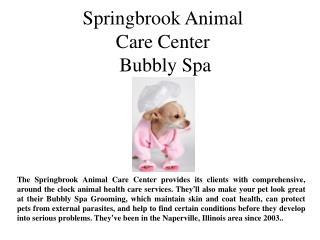 Springbrook Animal Care Center Bubbly Spa