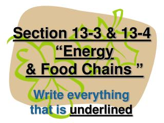 Section 13-3  13-4  Energy   Food Chains