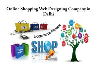 Online Shopping Website Designing Company in Delhi