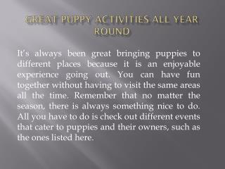 Great Puppy Activities All Year Round