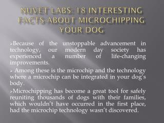 NuVet Labs Reviews: 18 Interesting Facts about Microchipping your Dog