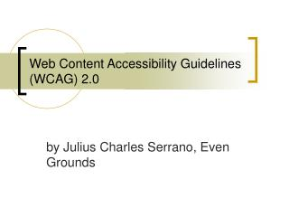 Web Content Accessibility Guidelines WCAG 2.0
