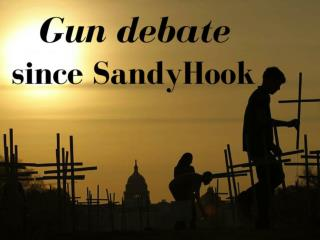 Gun debate since Sandy Hook