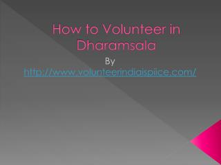 How to Volunteer in Dharamsala