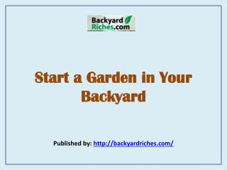 Start a Garden in Your Backyard
