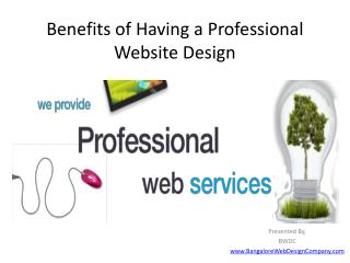 Benefits of Having a Professional Website Design