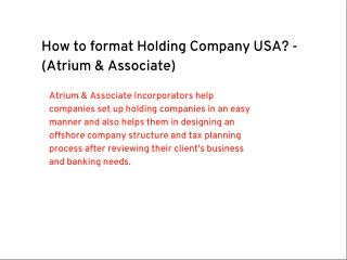 How to format Holding Company USA?