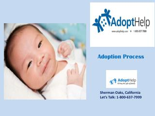 Newborn Adoption Process