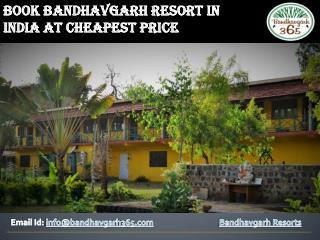 Best Service In Bandhavgarh Resorts