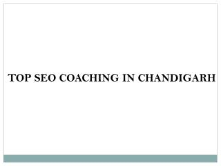 Top seo coaching in chandigarh