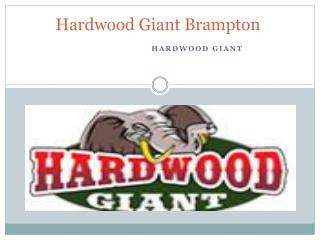 Hardwood Giant Brampton