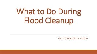 What to Do During Flood Cleanup