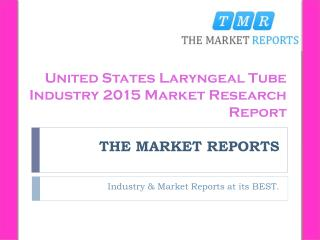 Price Analysis of United States Laryngeal Tube Key Manufacturers Forecast Report