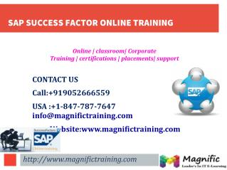 SAP SUCCESS FACTOR ONLINE TRAINING IN INDIA
