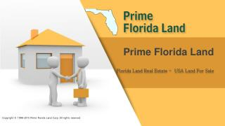 Owner Financed Land For Sale - Florida Land