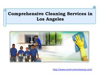 Comprehensive Cleaning Services in Los Angeles