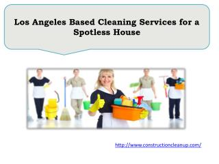 Los Angeles Based Cleaning Services for a Spotless House