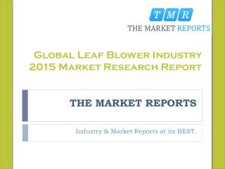 Global Leaf Blower Industry 2015 Market Research Report