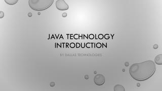 Java Training at Dallas Technologies
