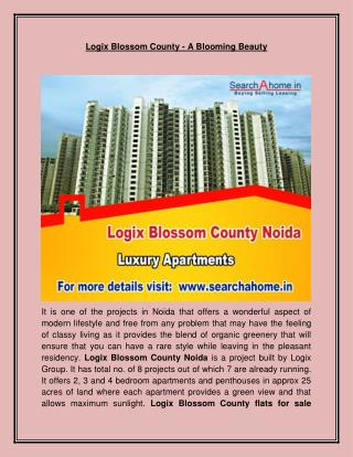 Logix Blossom County - A Blooming Beauty