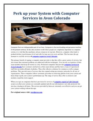 Perk up your System with Computer Services in Avon Colorado