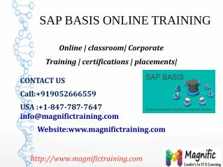 SAP BASIS ONLINE TRAINING IN USA,UK,CANADA
