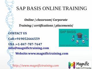 SAP BASIS ONLINE TRAINING IN INDIA,UK