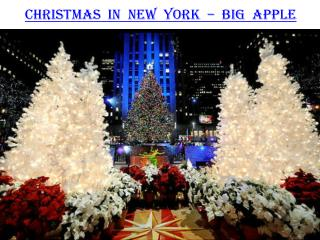 Christmas in New York - Big Apple