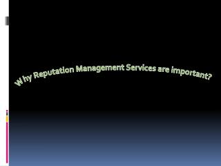 Why Reputation Management Services are important?