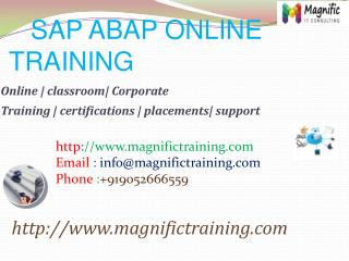 SAP ABAP ONLINE TRAINING IN GERMANY|THAILAND