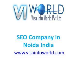 Website Development (9899756694) Company in Noida India-visainfoworld.com