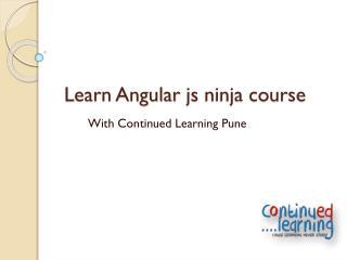 Learn angularjs ninja course