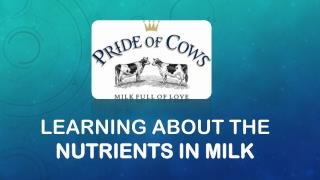 Learning about the nutrients in milk