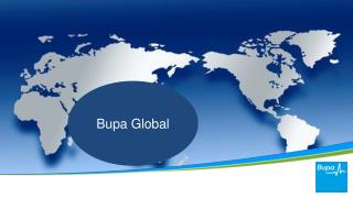 About Bupa Global